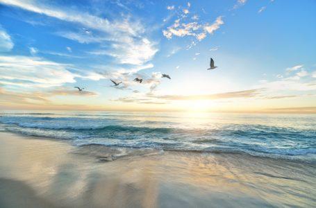 """Racconti brevi: """"Il sapore del mare"""""""