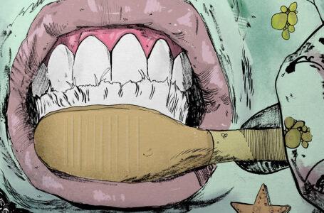 Salsedine – Illustrazione di Leo Zeni