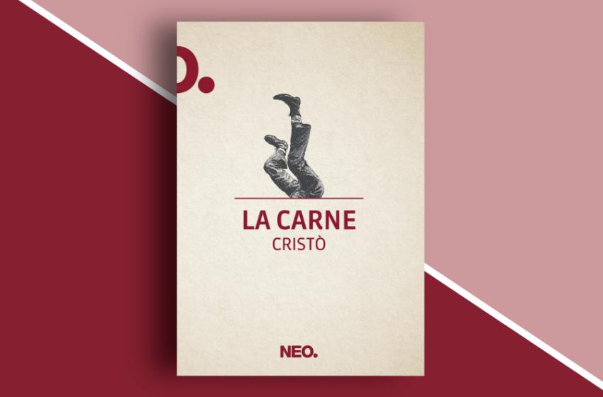 La carne di Cristò Chiapparino: l'apatia del mondo in un romanzo sperimentale. Recensione